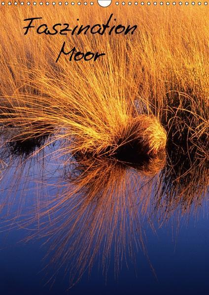 Faszination Moor (Wandkalender 2017 DIN A3 hoch) - Coverbild
