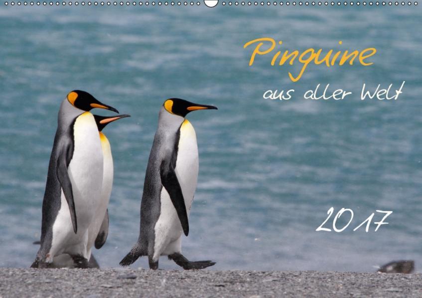 Pinguine aus aller Welt (Wandkalender 2017 DIN A2 quer) - Coverbild