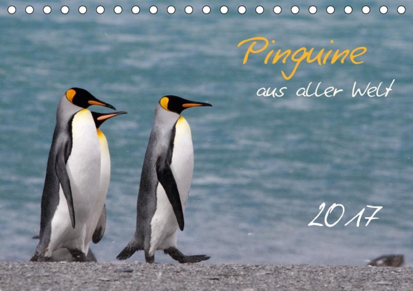 Pinguine aus aller Welt (Tischkalender 2017 DIN A5 quer) - Coverbild