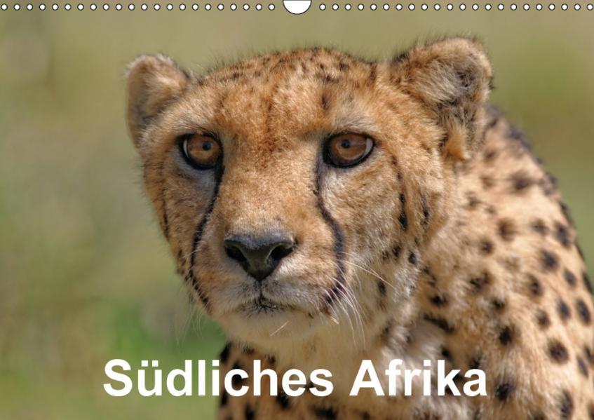 Südliches Afrika (Wandkalender 2017 DIN A3 quer) - Coverbild