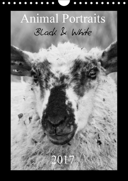 Animal Portraits Black & White 2017 CH Version (Wandkalender 2017 DIN A4 hoch) - Coverbild