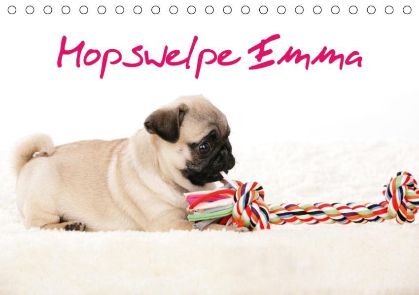 Mopswelpe Emma (Tischkalender 2017 DIN A5 quer) - Coverbild