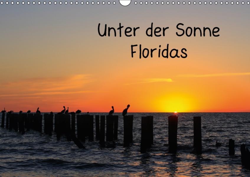 Unter der Sonne Floridas (Wandkalender 2017 DIN A3 quer) - Coverbild
