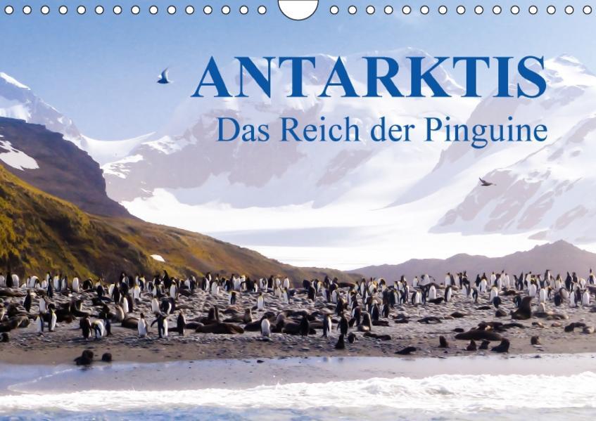 Antarktis - Das Reich der Pinguine CH-Version (Wandkalender 2017 DIN A4 quer) - Coverbild