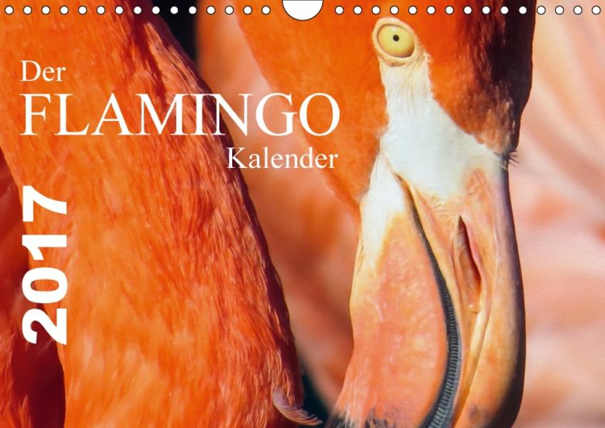 Der Flamingo Kalender CH-Version (Wandkalender 2017 DIN A4 quer) - Coverbild