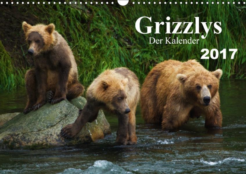 Grizzlys - Der Kalender CH-Version (Wandkalender 2017 DIN A3 quer) - Coverbild