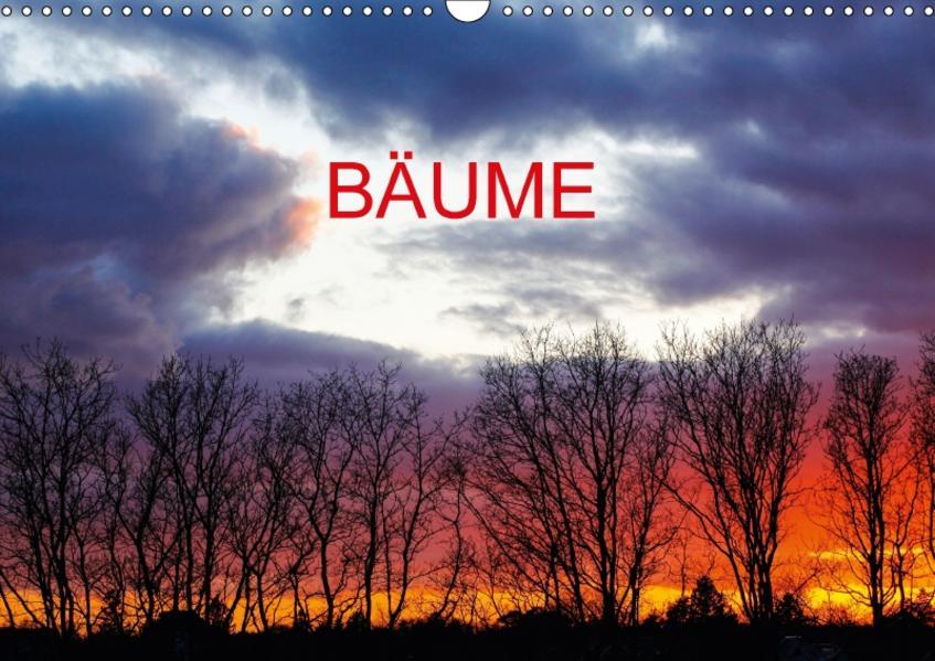 Bäume (CH-Version) (Wandkalender 2017 DIN A3 quer) - Coverbild