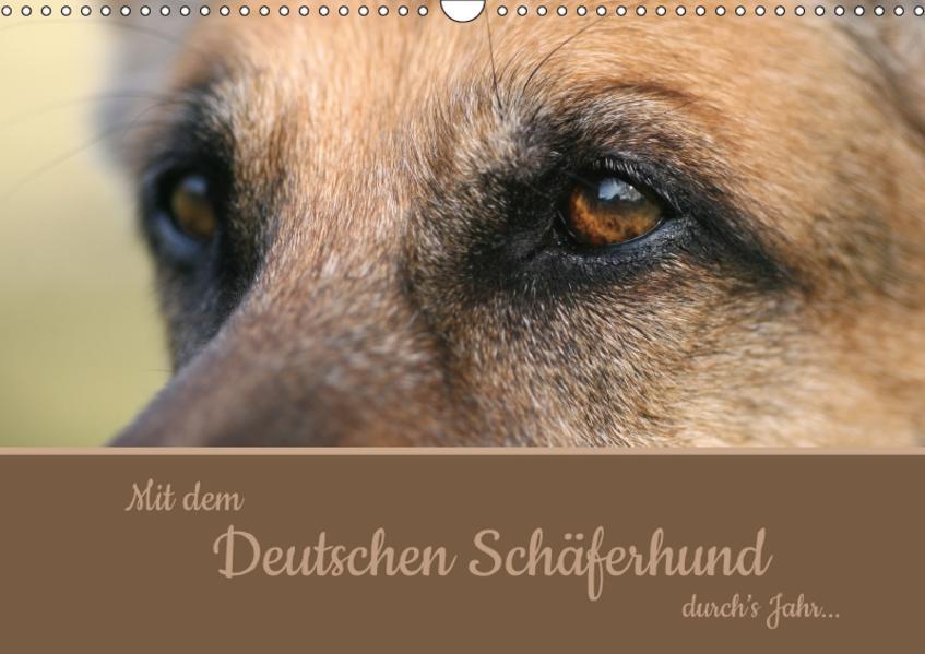 Mit dem Deutschen Schäferhund durch's Jahr (Wandkalender 2017 DIN A3 quer) - Coverbild