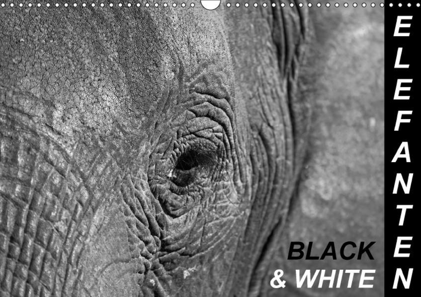 Elefanten - Black & White (Wandkalender 2017 DIN A3 quer) - Coverbild
