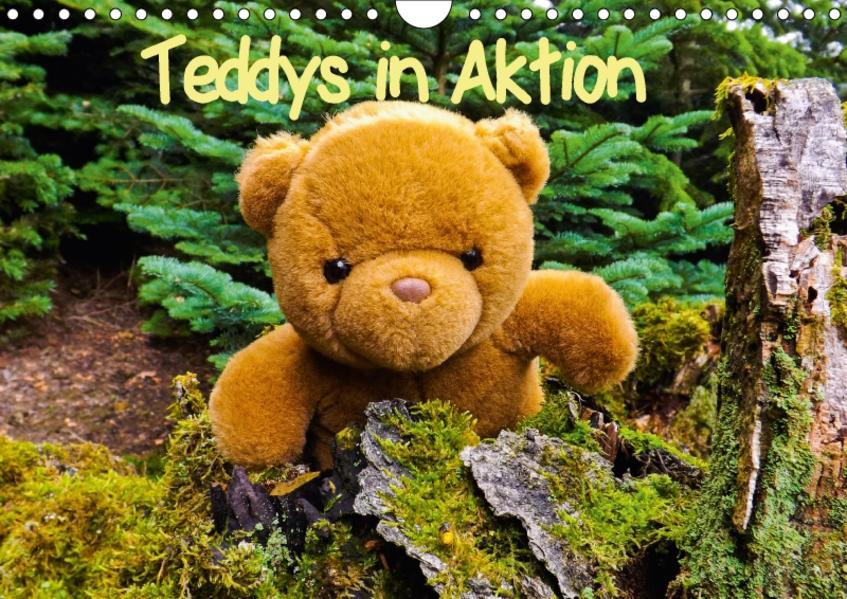 Teddys in AktionCH-Version  (Wandkalender 2017 DIN A4 quer) - Coverbild