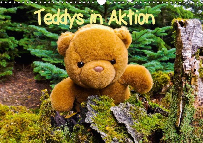 Teddys in AktionCH-Version  (Wandkalender 2017 DIN A3 quer) - Coverbild