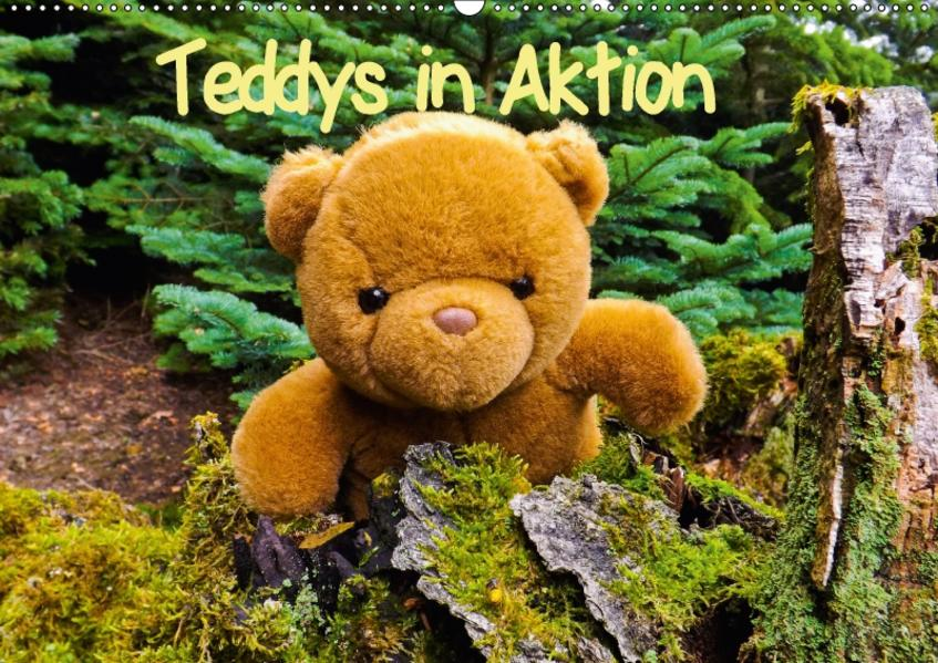 Teddys in AktionCH-Version  (Wandkalender 2017 DIN A2 quer) - Coverbild