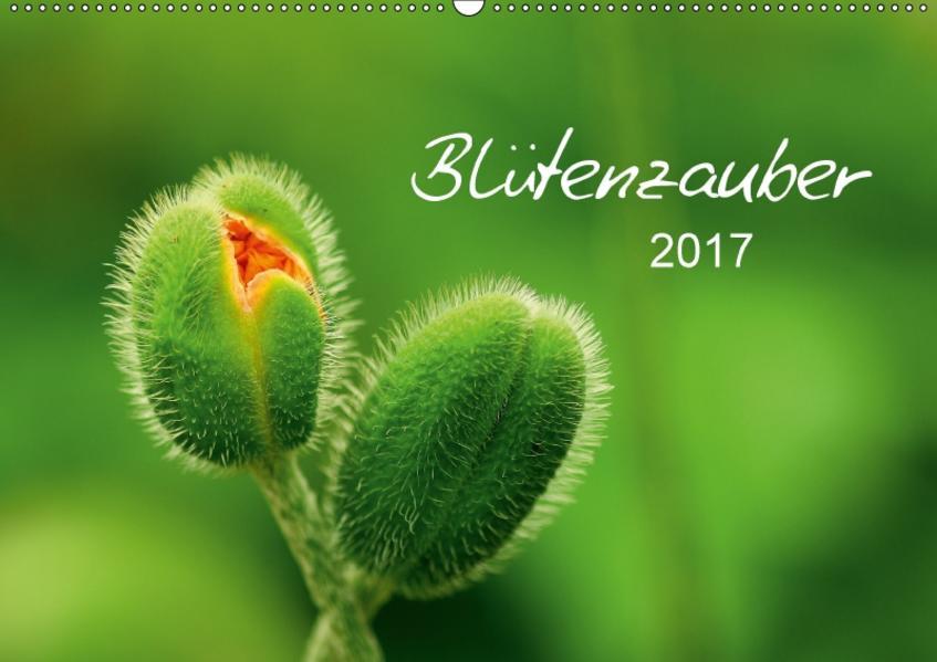 Blütenzauber 2017 (Wandkalender 2017 DIN A2 quer) - Coverbild
