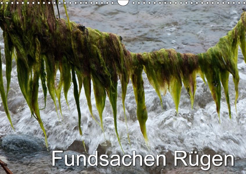 Fundsachen Rügen (Wandkalender 2017 DIN A3 quer) - Coverbild