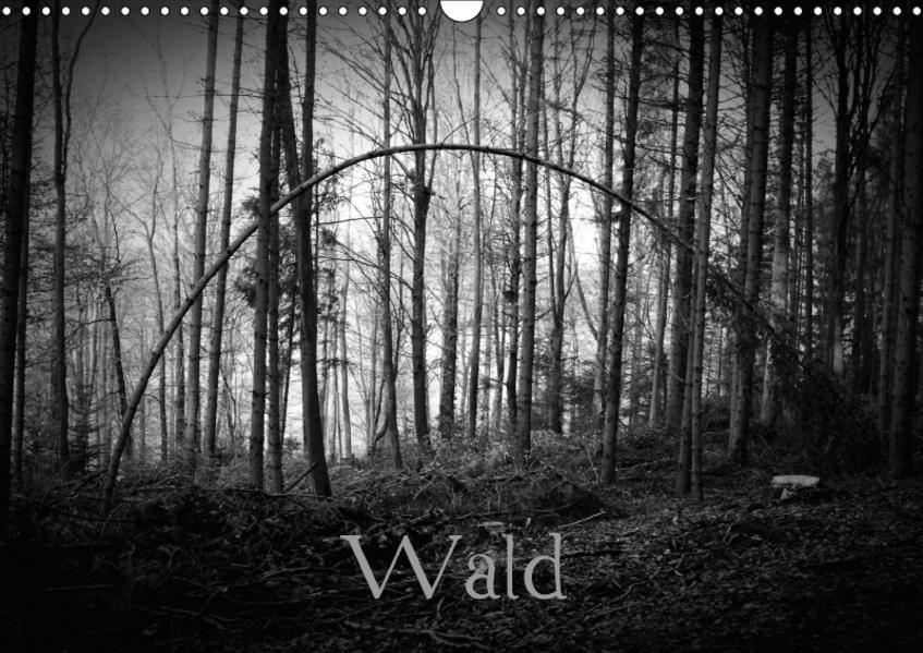 WaldCH-Version  (Wandkalender 2017 DIN A3 quer) - Coverbild