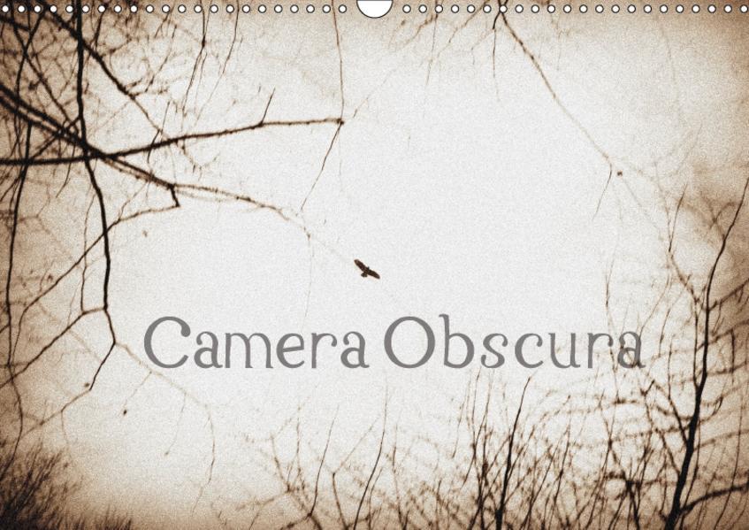 Camera ObscuraCH-Version  (Wandkalender 2017 DIN A3 quer) - Coverbild