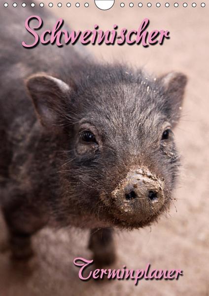 Schweinischer Terminplaner (Wandkalender 2017 DIN A4 hoch) - Coverbild