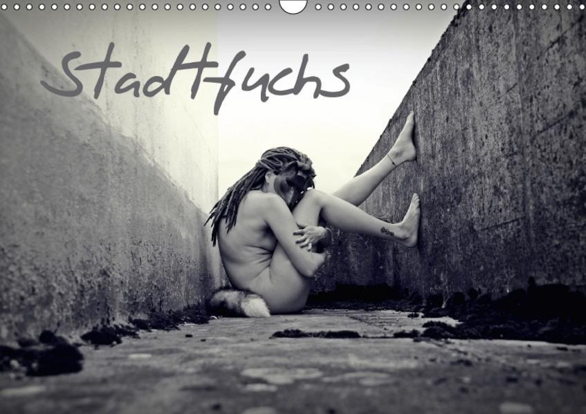 StadtfuchsCH-Version  (Wandkalender 2017 DIN A3 quer) - Coverbild