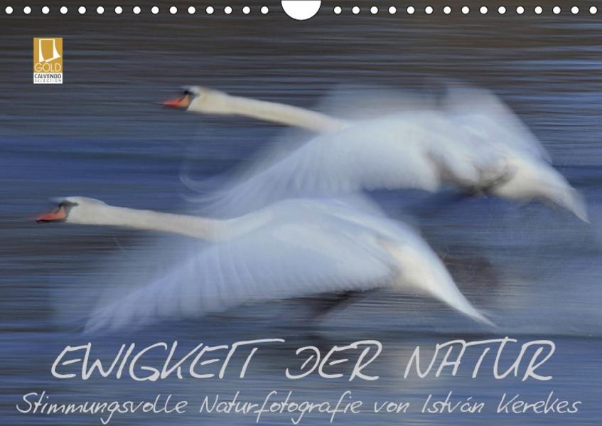 Ewigkeit der Natur (Wandkalender 2017 DIN A4 quer) - Coverbild