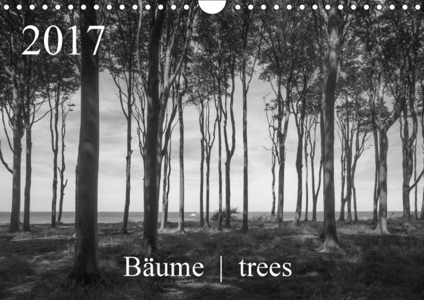 Bäume  trees 2017 (Wandkalender 2017 DIN A4 quer) - Coverbild