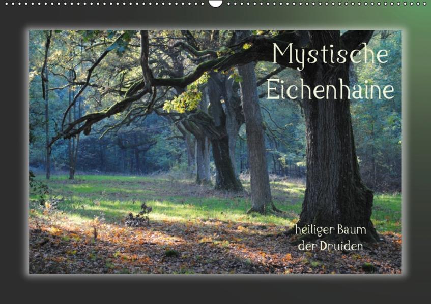 Mystische Eichenhaine (Wandkalender 2017 DIN A2 quer) - Coverbild