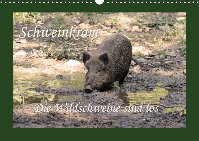 Schweinkram - Die Wildschweine sind los (Wandkalender 2017 DIN A3 quer) - Coverbild