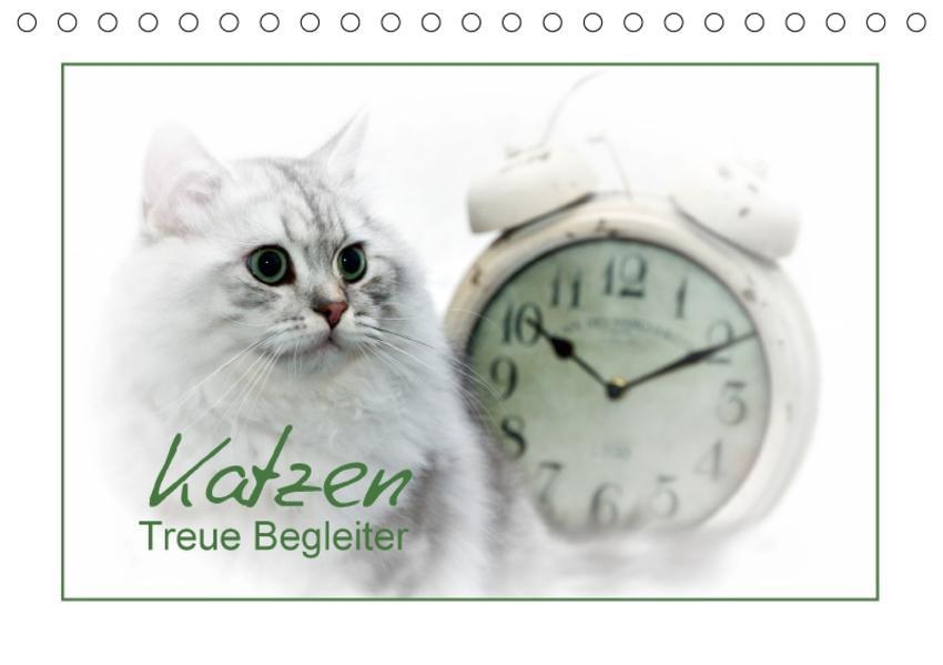 Katzen – Treue Begleiter (CH - Version) (Tischkalender 2017 DIN A5 quer) - Coverbild