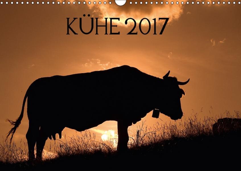 Kühe 2017 (Wandkalender 2017 DIN A3 quer) - Coverbild
