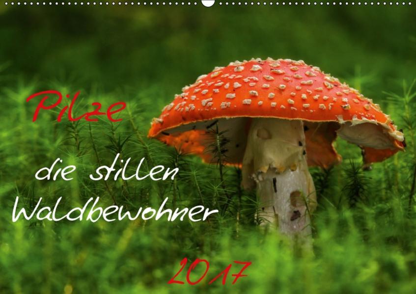 Pilze, die stillen Waldbewohner 2017 (Wandkalender 2017 DIN A2 quer) - Coverbild