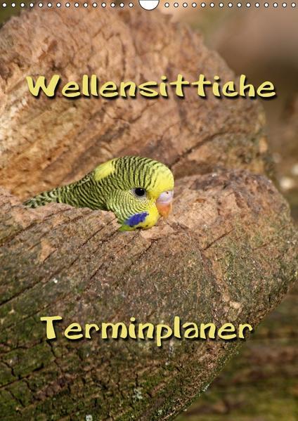 Wellensittiche Terminplaner (Wandkalender 2017 DIN A3 hoch) - Coverbild