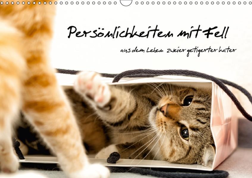 Persönlichkeiten mit Fell - aus dem Leben zweier getigerter Kater (Wandkalender 2017 DIN A3 quer) - Coverbild