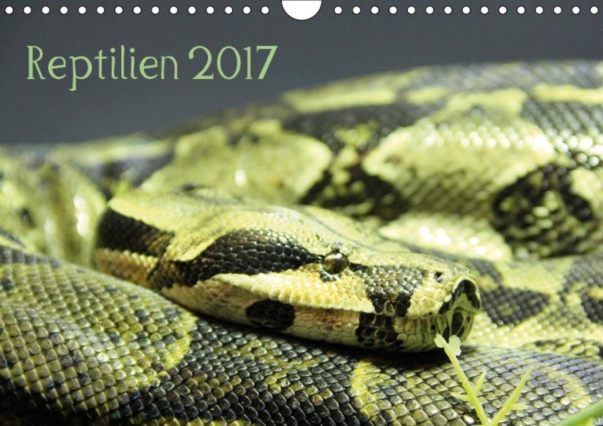 Reptilien 2017 (Wandkalender 2017 DIN A4 quer) - Coverbild