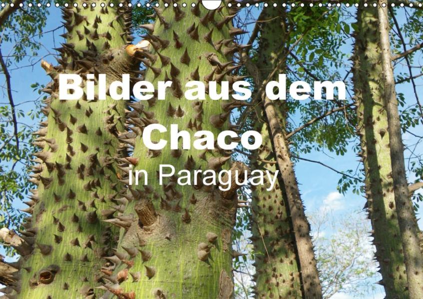 Bilder aus dem Chaco in Paraguay (Wandkalender 2017 DIN A3 quer) - Coverbild