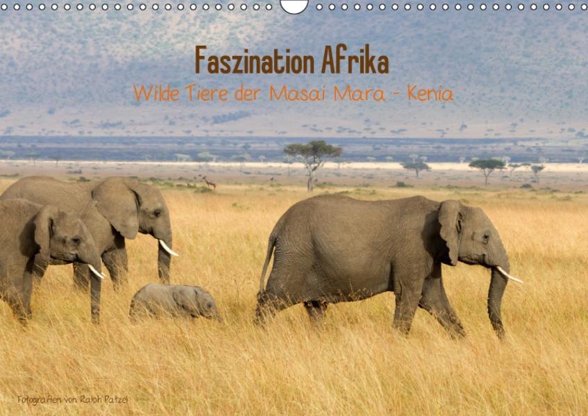 Faszination Afrika - wilde Tiere der Masai Mara - Kenia (Wandkalender 2017 DIN A3 quer) - Coverbild