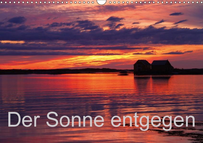 Der Sonne entgegen (Wandkalender 2017 DIN A3 quer) - Coverbild