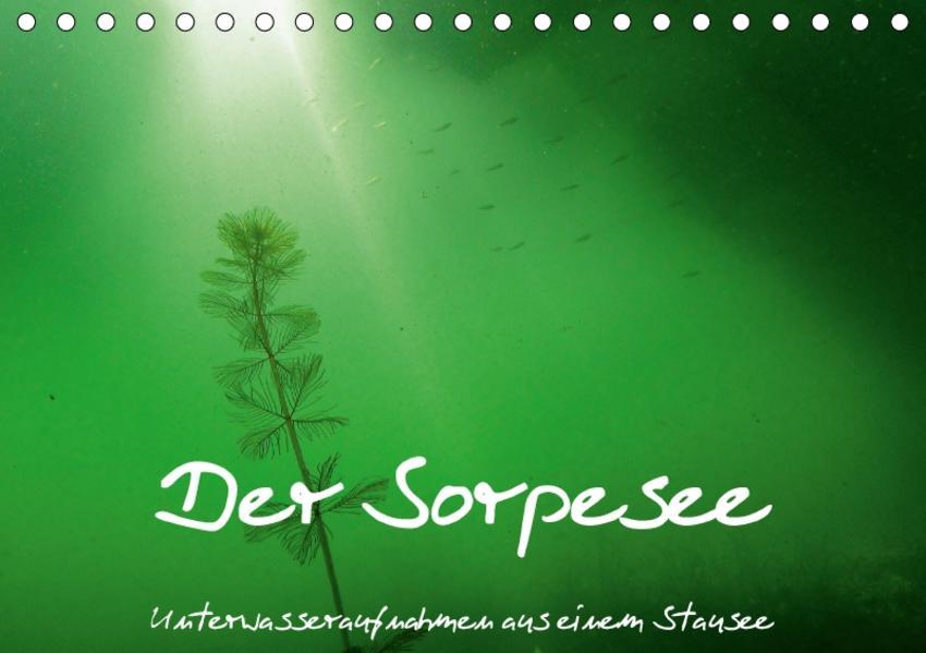 Der Sorpesee - Unterwasseraufnahmen aus einem Stausee (Tischkalender 2017 DIN A5 quer) - Coverbild