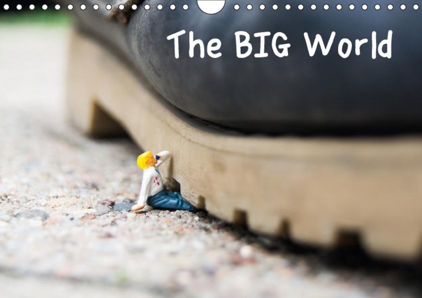 the BIG World (Wandkalender 2017 DIN A4 quer) - Coverbild