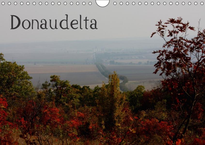 DonaudeltaCH-Version  (Wandkalender 2017 DIN A4 quer) - Coverbild