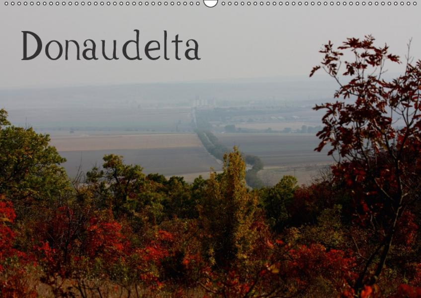 DonaudeltaCH-Version  (Wandkalender 2017 DIN A2 quer) - Coverbild