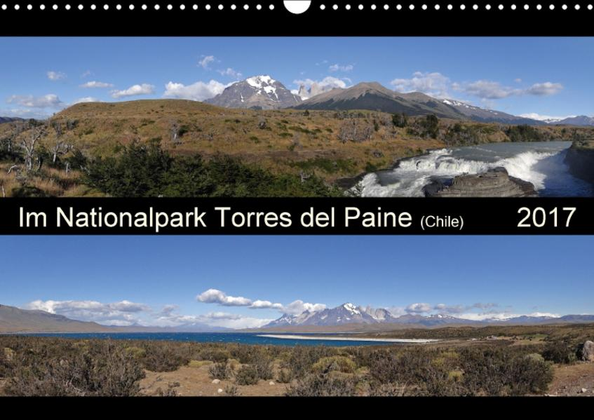 Im Nationalpark Torres del Paine (Chile) (Wandkalender 2017 DIN A3 quer) - Coverbild