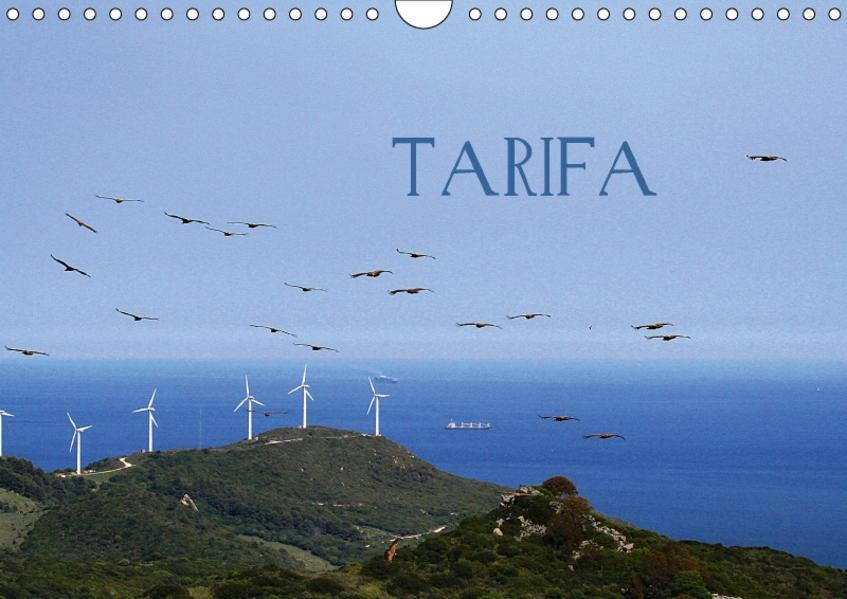 TARIFACH-Version  (Wandkalender 2017 DIN A4 quer) - Coverbild