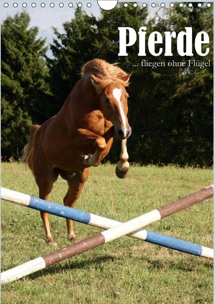 Pferde ... fliegen ohne Flügel (Wandkalender 2017 DIN A4 hoch) - Coverbild