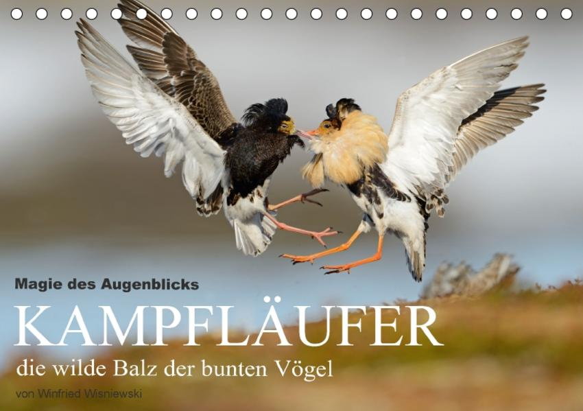 Magie des Augenblicks - Kampfläufer - die wilde Balz der bunten Vögel (Tischkalender 2017 DIN A5 quer) - Coverbild