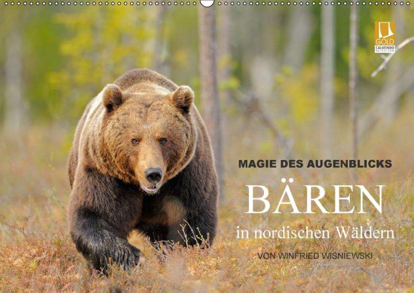 Magie des Augenblicks - Bären in nordischen Wäldern (Wandkalender 2017 DIN A2 quer) - Coverbild