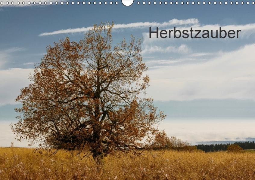 Herbstzauber (Wandkalender 2017 DIN A3 quer) - Coverbild