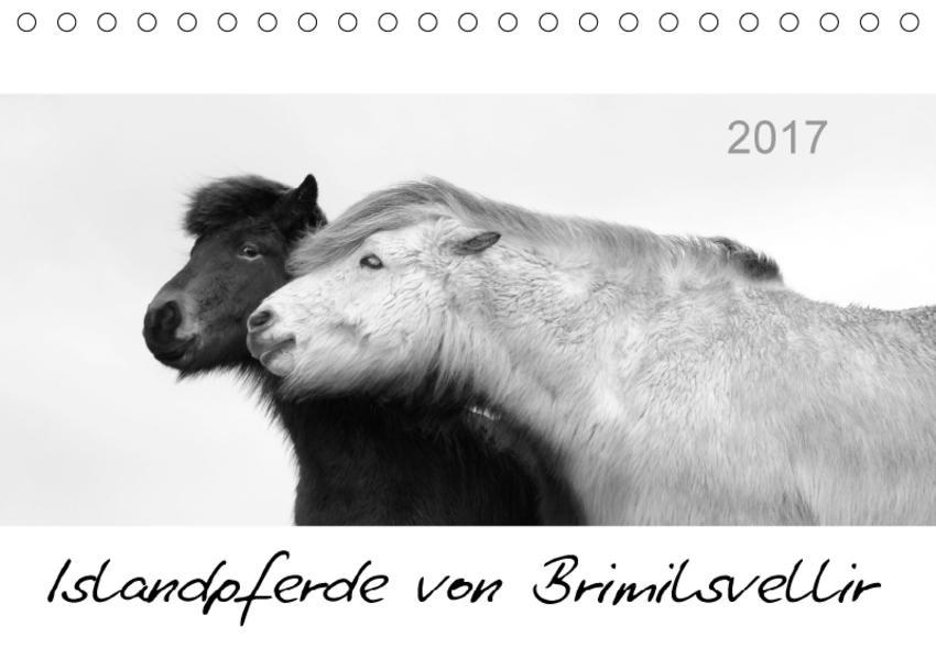 Islandpferde von Brimilsvellir (Tischkalender 2017 DIN A5 quer) - Coverbild