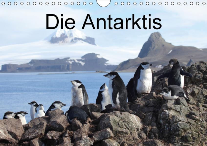 Die Antarktis / CH-Version (Wandkalender 2017 DIN A4 quer) - Coverbild