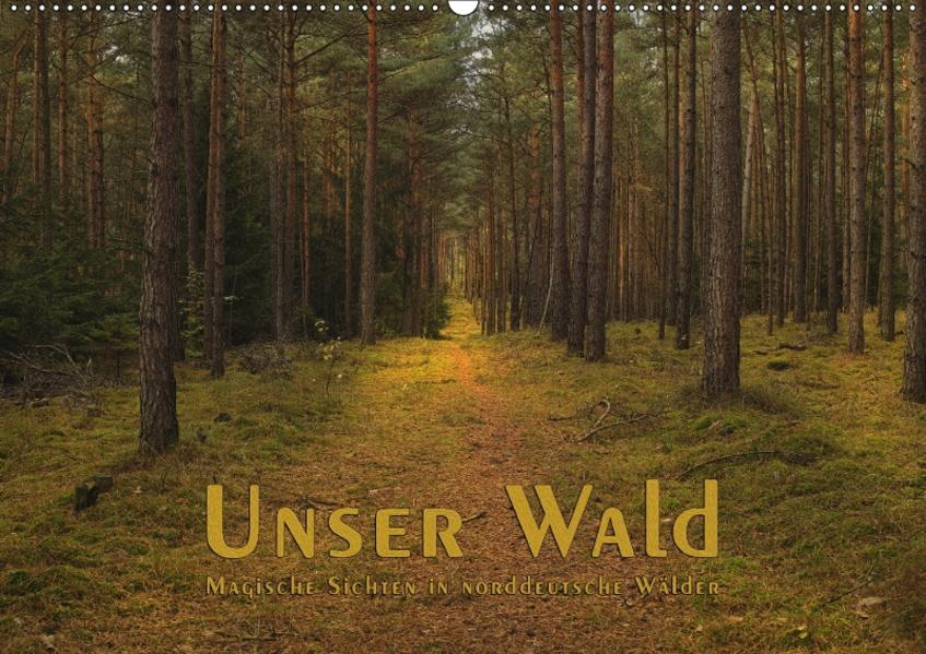 Unser Wald - Magische Sichten in norddeutsche Wälder (Wandkalender 2017 DIN A2 quer) - Coverbild