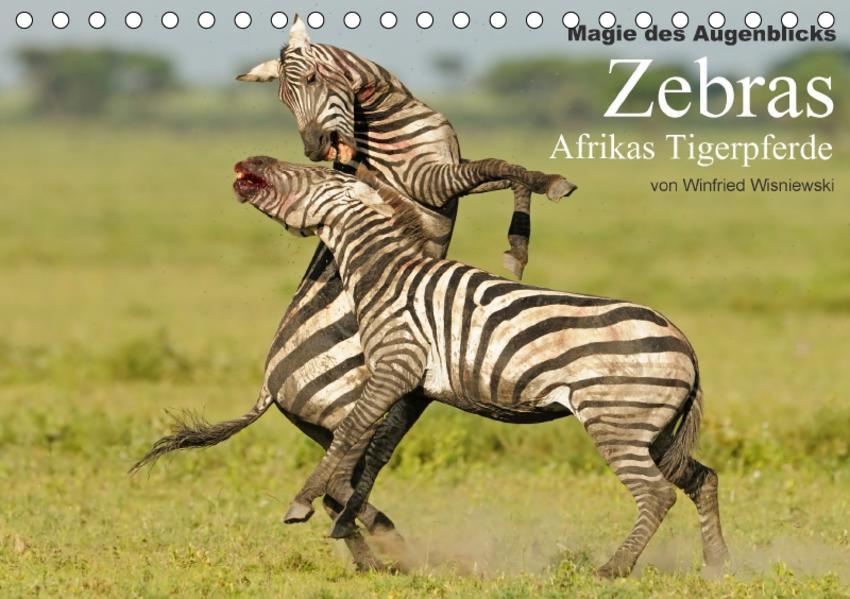 Magie des Augenblicks - Zebras - Afrikas Tigerpferde (Tischkalender 2017 DIN A5 quer) - Coverbild