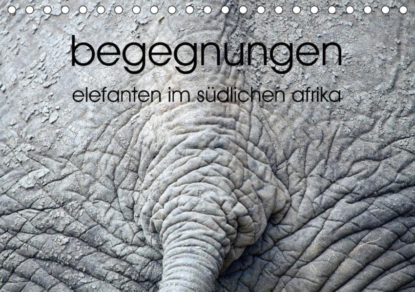 begegnungen - elefanten im südlichen afrika (Tischkalender 2017 DIN A5 quer) - Coverbild
